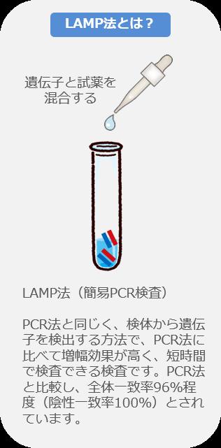 LAMP法とは?