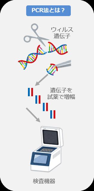 PCR法とは?
